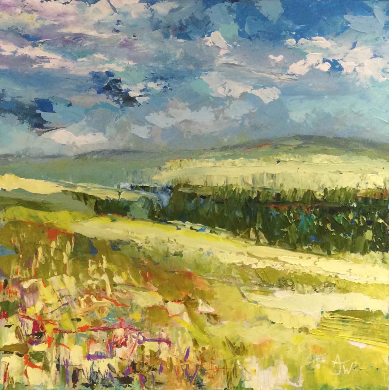 Anne Jane Waters | Stolen View across The Water Meadows