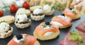 Canapes at The Ark Conference Centre Basingstoke